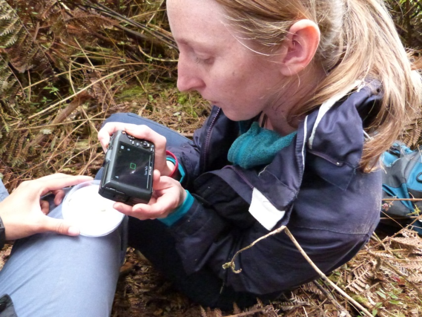 Amy in the field surveying Spikies, so we can better understand this unique species