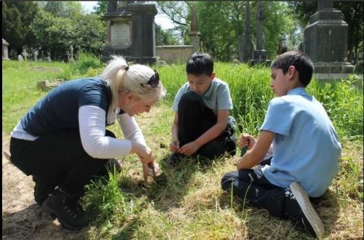 Allensbank primary school, planting at Cathays cemetery with Urban Buzz and Cardiff council