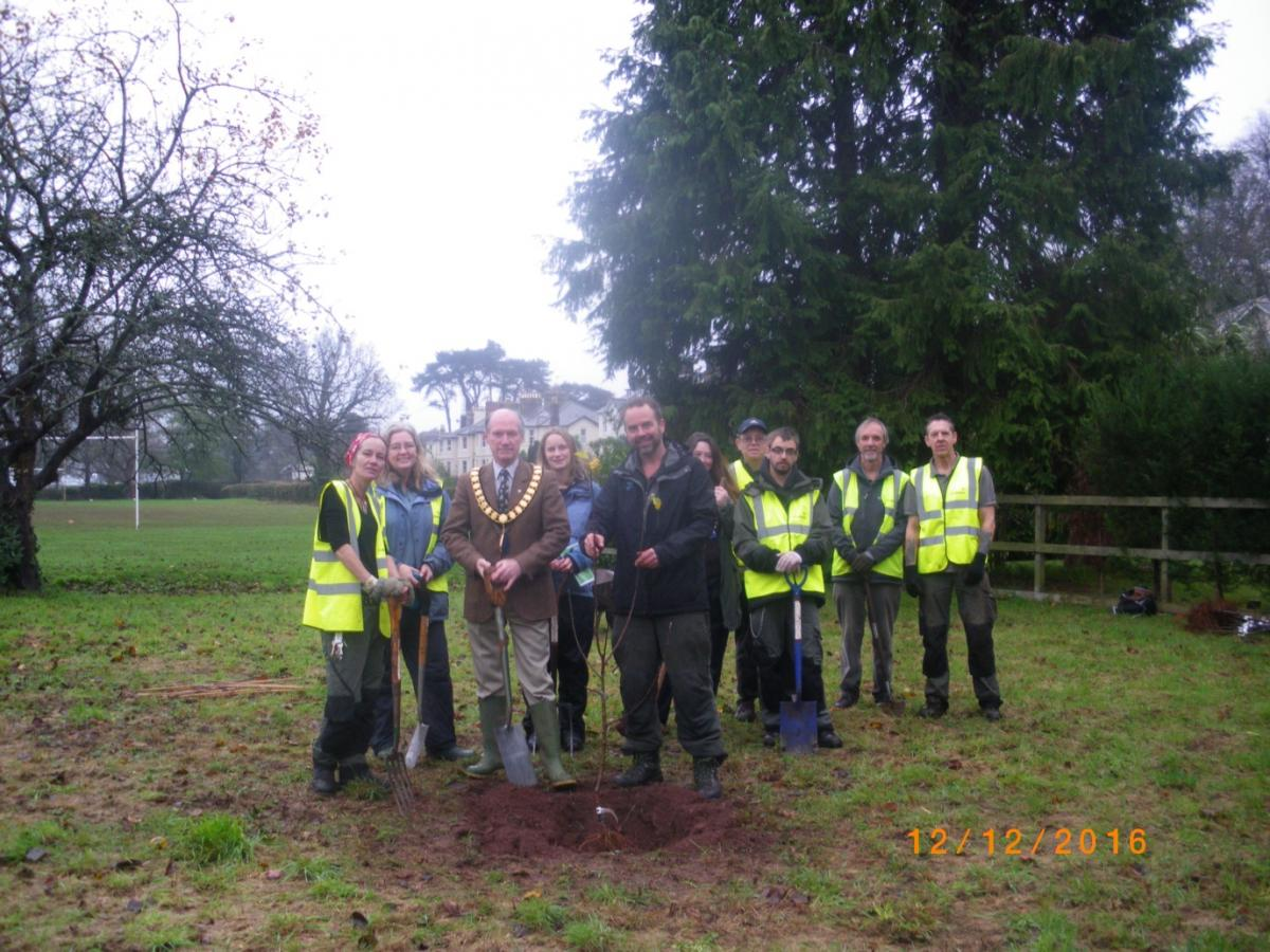 Trees for bees being planted at Torre Valley South, Torquay.