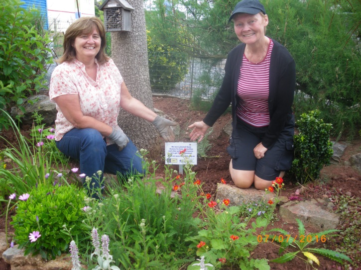 Ruth and Sue near the new plants at Young's Park.