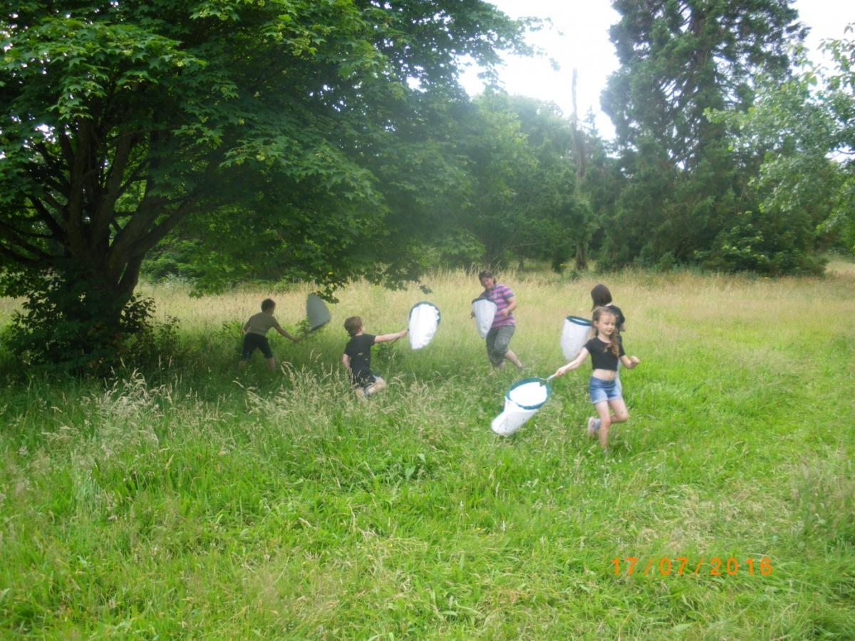 "Helen hunting for bugs at Cockington with children attending ""Love Parks Day""."