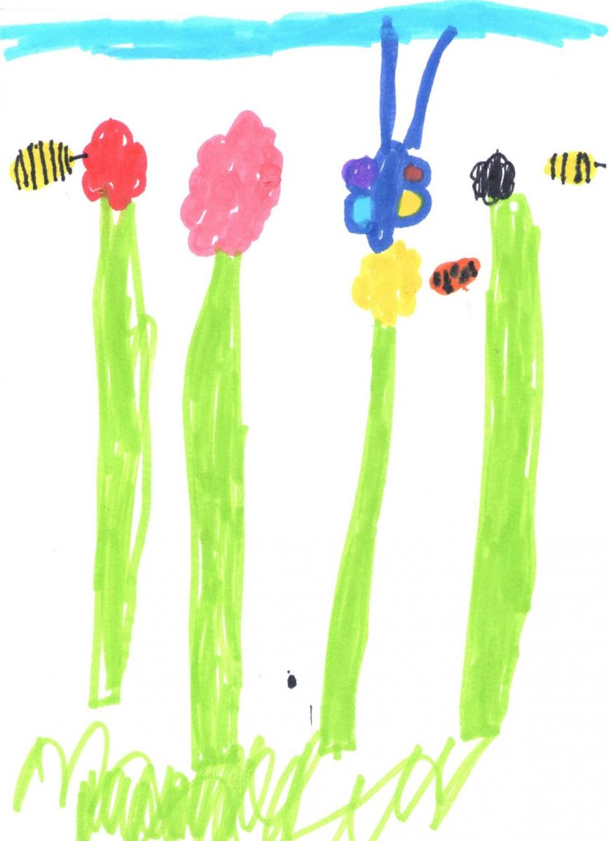 Lily Howe, Age 5. Shiphay Learning Academy.